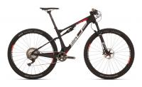 MTB 29 Fully XF Team Issue 11Gg Carbon - Bike Schmiede Biesenrode GbR