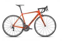 Road 28  Team Issue LTD Carbon - Total Normal Bikes - Onlineshop und E-Bike Fahrradgeschäft in St.Ingbert im Saarland